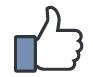 Page Facebook de Pro'fil broderie
